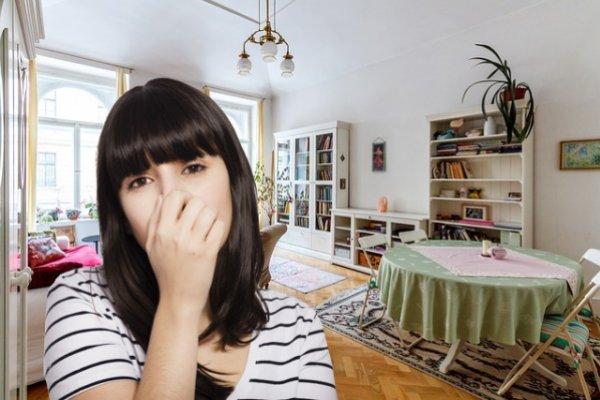 10 проблем, вызванных сухим воздухом в квартире