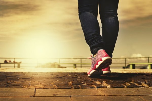 Утренние прогулки: 10 преимуществ