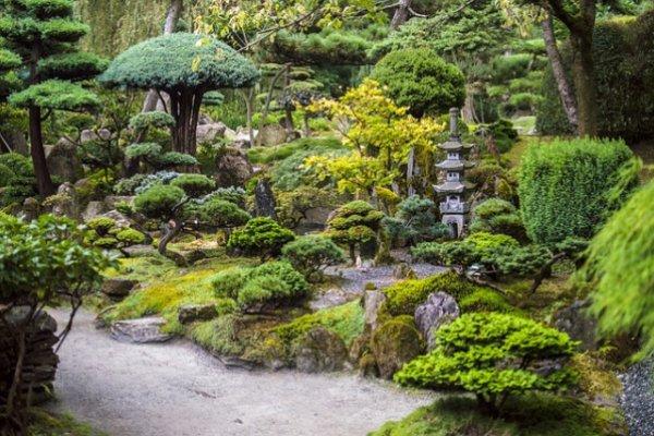 Создаем сад в японском стиле