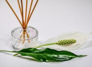 Чем полезна ароматерапия