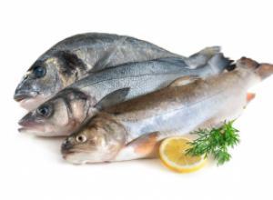 Советы и рекомендации по определению качества рыбы