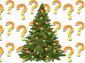 Что делать с ёлкой после праздников?