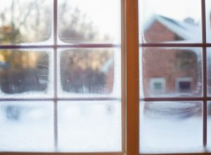 10 необычных идей по украшению окон на Новый год