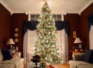 Новогодняя елка: аргументы «За» и «Против»