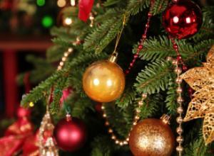 Как сохранить новогоднюю елку: 5 секретов
